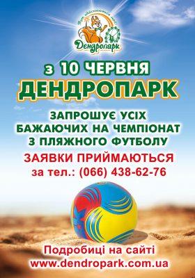 чемпіонат з пляжного футболу